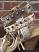 Ivy-Kirzhner-Hildagard-Size-10-Heels_47801D.jpg