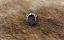 NEW-Ouroboros-Designs-BOULDER-OPAL-Ring_46157C.jpg