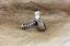 NEW-Ouroboros-Designs-BOULDER-OPAL-Ring_46157D.jpg